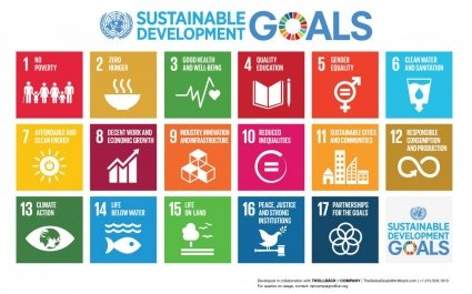 UN Sustainable Development Goals, Global Goals, Sustainability